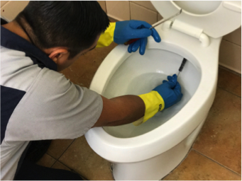 Hygenex specialist cleaning toilet bowl